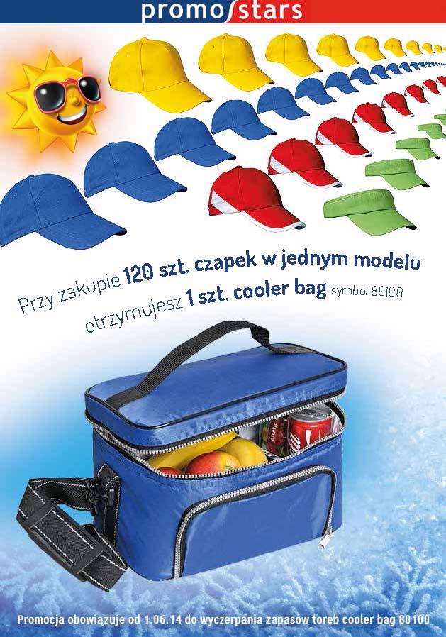 cooler bag-1